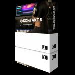 Native Instruments Kontakt Crack 6.5.0 Full Version Free Download
